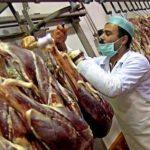گوشت لاشه شترمرغ